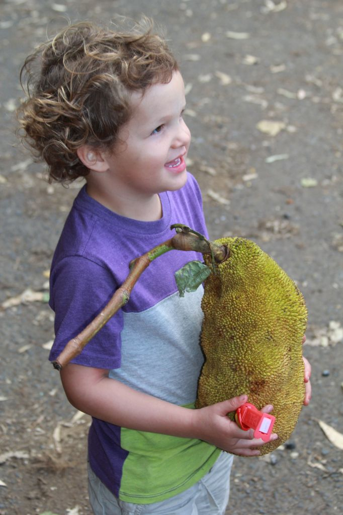 Heath w/Jackfruit