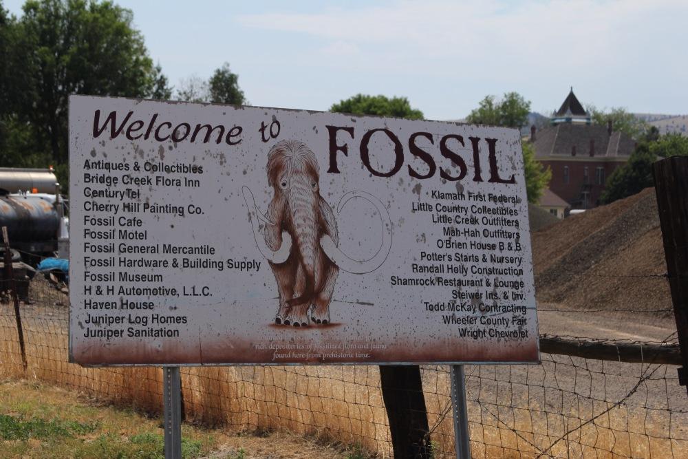 Oregon Trail: Day 2 - Fossils (3/6)