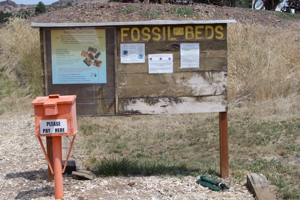 Oregon Trail: Day 2 - Fossils (5/6)