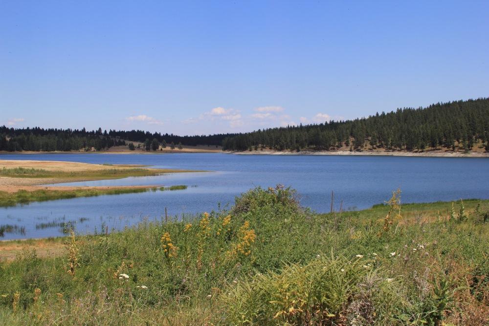 Oregon Trail: Day 5 - Finding Pilcher Creek Resevoir (2/6)