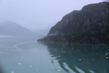 Foggy morning in Glacier Bay