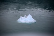 First ice berg we saw