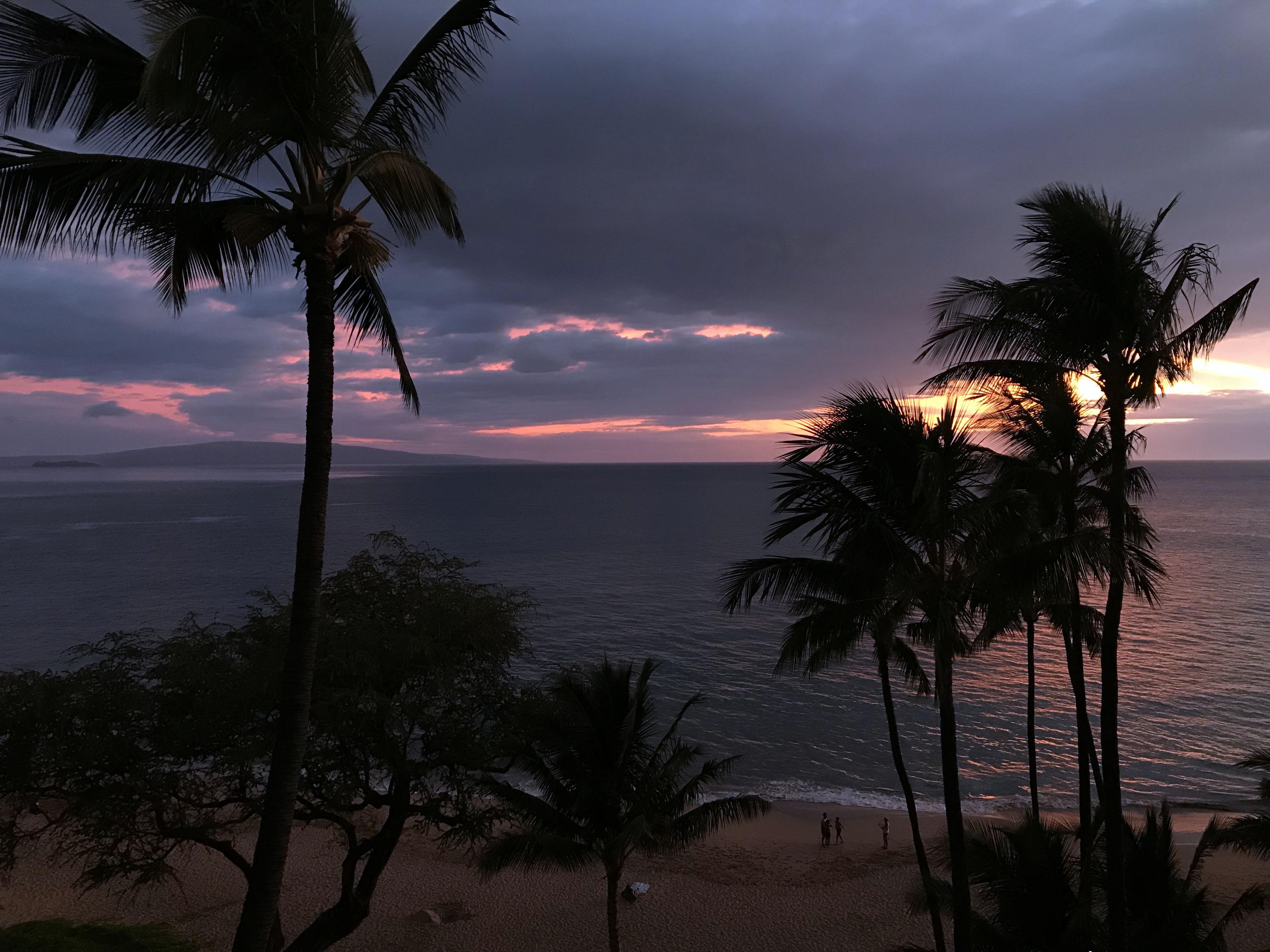 Maui - 18