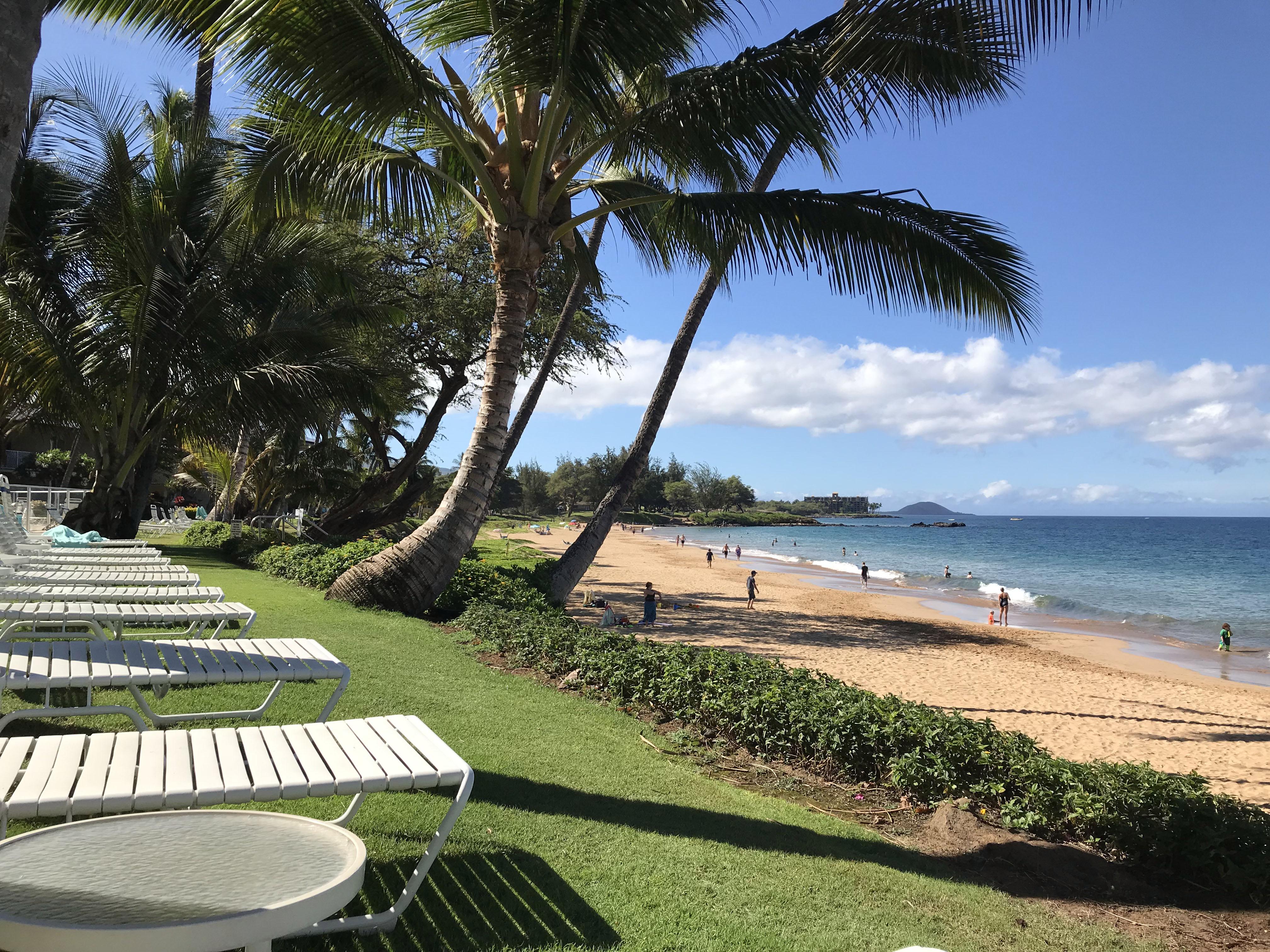Maui - 7