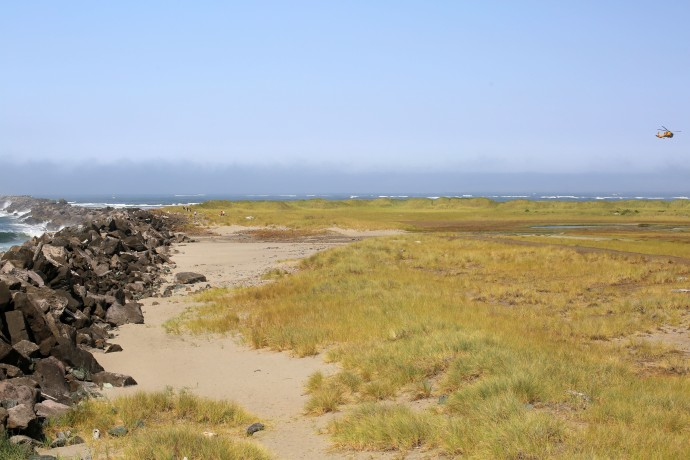 Oregon_Coast - 12
