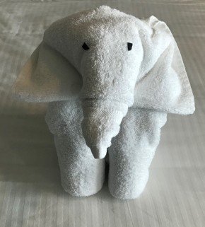 towelelephant